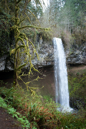 A photograph taken at Shellburg Falls