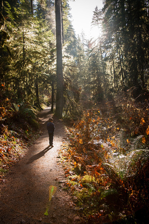 A photograph taken at Silver Falls State Park