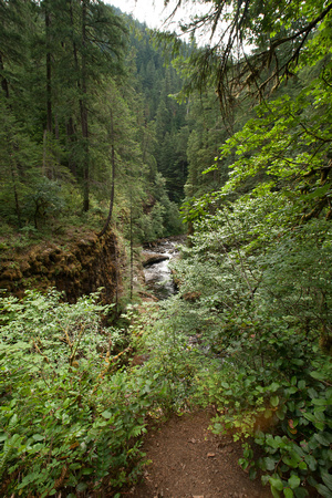 A photograph taken at Eagle Creek