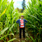 Link to Fiala Farms corn maze and pumpkin patch