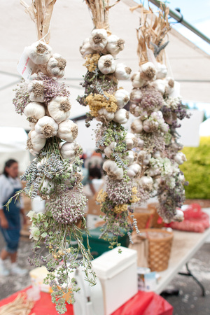 A photograph taken at Oregon's Garlic Festivals