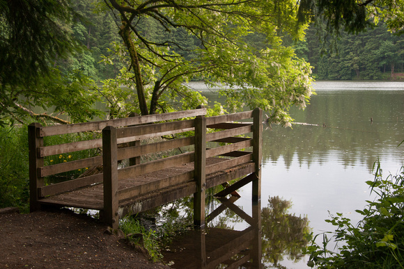 A photograph taken at Lacamas Park