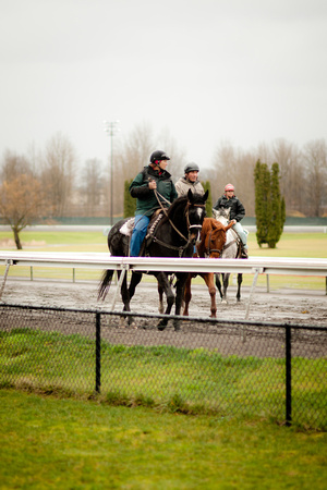A photograph taken at Portland Meadows
